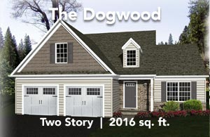 The Dogwood
